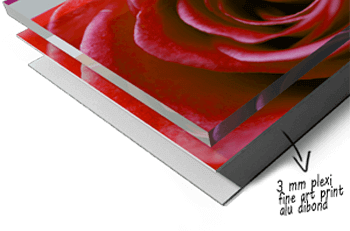 Foto op plexiglas afdrukken